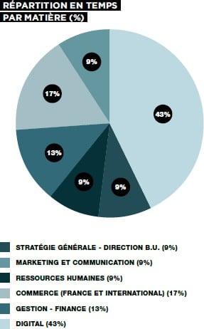 Management de la Transformation Digitale de l'Entreprise IFAG